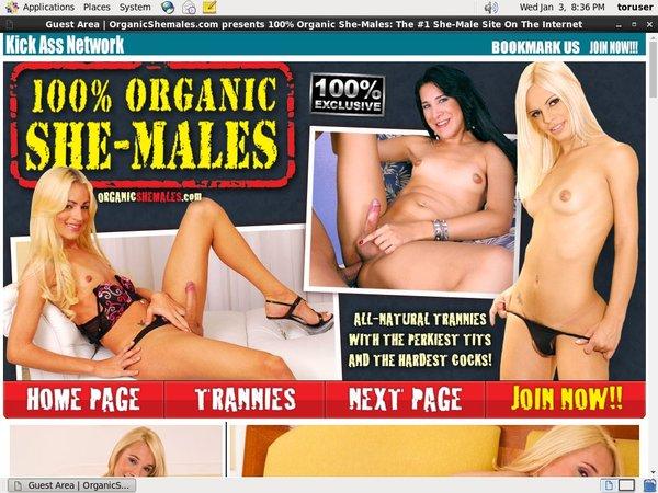 Organicshemales Account Login