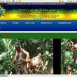 Brazilian Studz Network