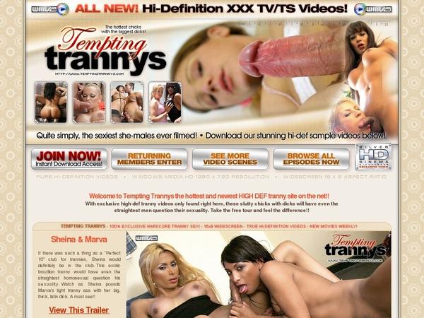Free Temptingtrannys.com Member
