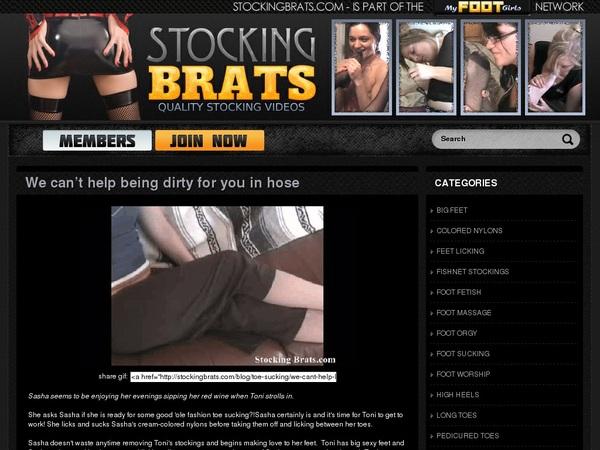 Daily Stocking Brats Acc